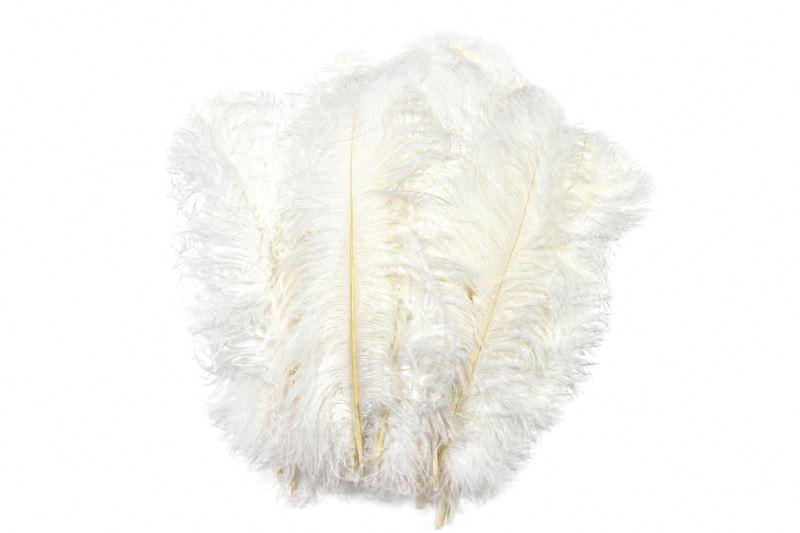 Высокое качество Различные размеры цветные дешевые высококачественные страусиные перья