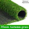 35ミリメートル秋の草