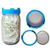 Blue glass sprouting jar