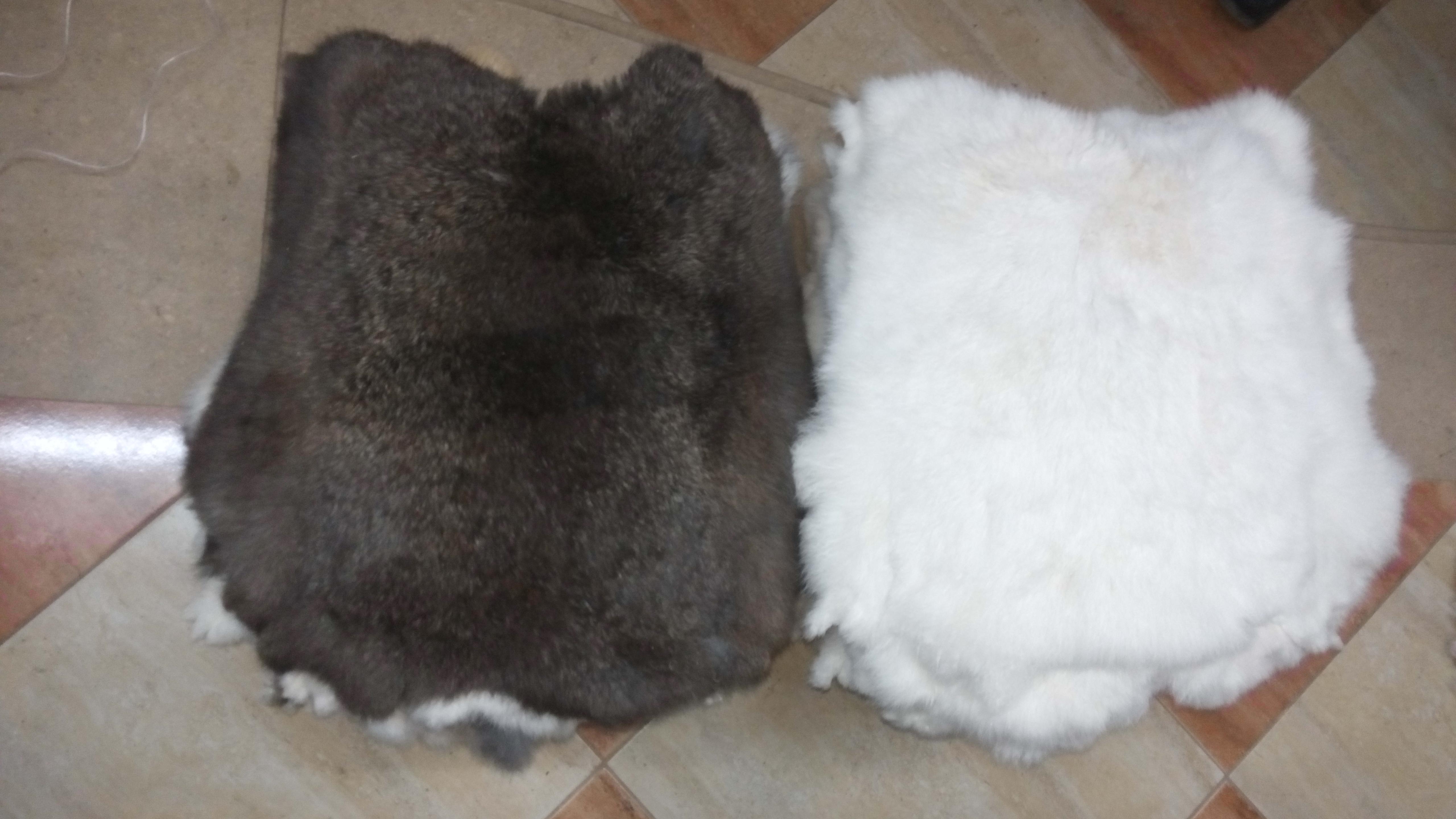 Fur Rabbit Pelt