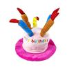 Pink Birthday Hat