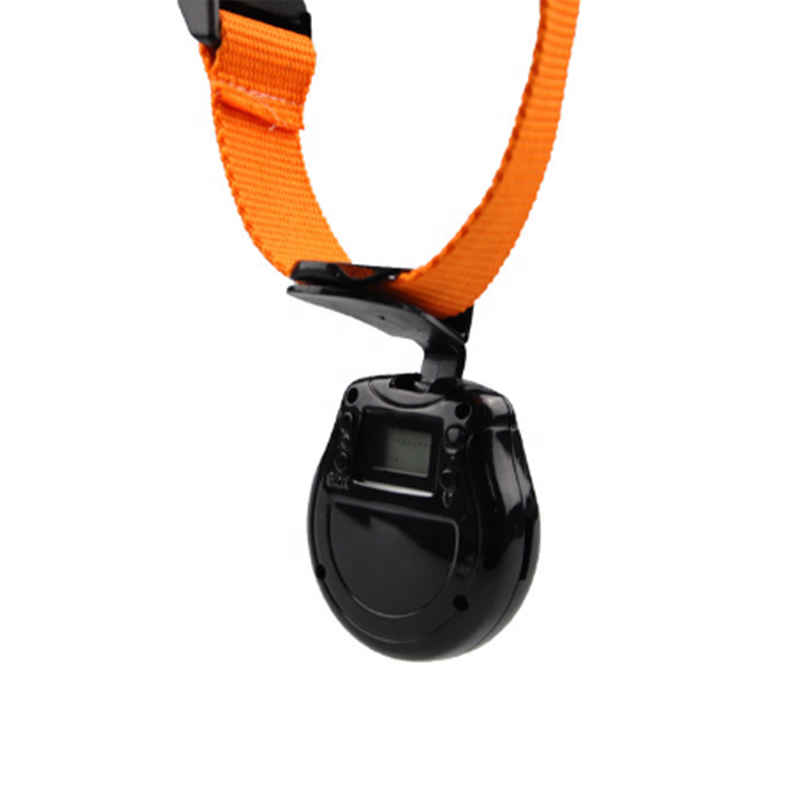 Микро камера для домашних животных мини камера для записи собаки ошейник для домашних животных камера ошейник для кошки видео