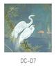 DC-D7