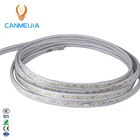 220V 5730 white warm white blue purple Flexible strip lighting led Double row 120chips/m LED strip lights/led light strip