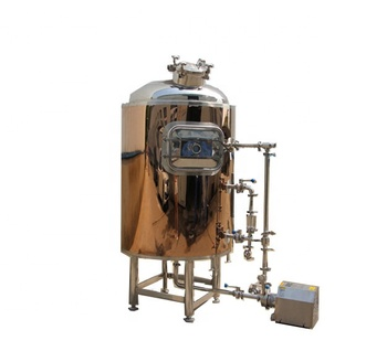 New product launch 50L-5000L 300l small home beer brewing equipment
