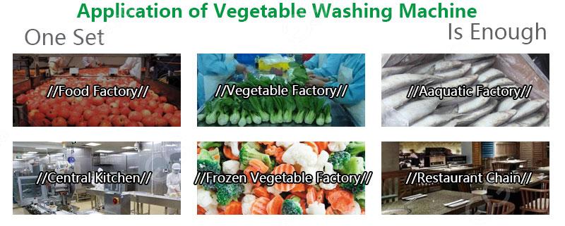 Fruit and Vegetable Washing Machine