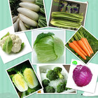 Vegetable Chinese Vegetable Chinese Fresh Mixed Vegetable Cauliflower/ Broccoli/ White Radish/ Celery / Red Cabbage /carrot Supplying To World
