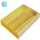 Shuttering Panel for Construction Good Selling 3 Ply LEONKING 21/27mm PF Glue 8%-12% CN;ANH Formwork,villa Modern