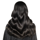 BBOSS virgin guangzhou beauty hair company,wholesale virgin european hair wefts,supply color wigs human hair indian