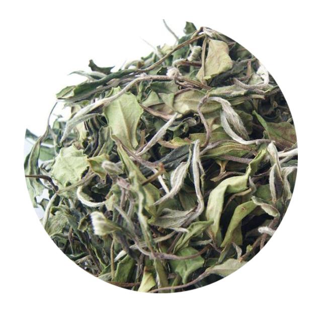 Hot sale cheap price EU Standard Healthy FujiancBai Mu Dan/ White Peony White Tea - 4uTea | 4uTea.com