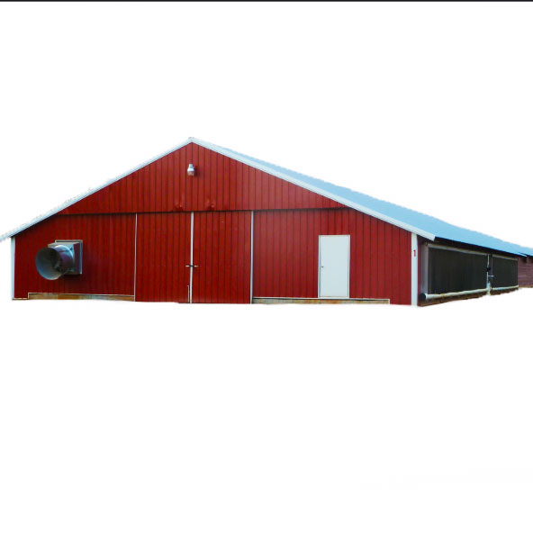 low cost designs poultry houses chicken shed