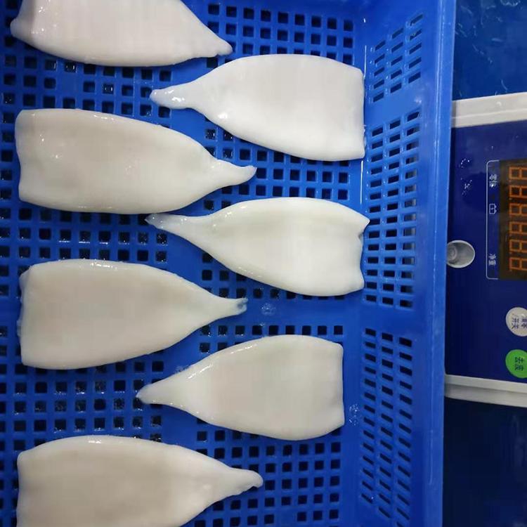 wholesale Fresh frozen squid for sale indian squid squid tube