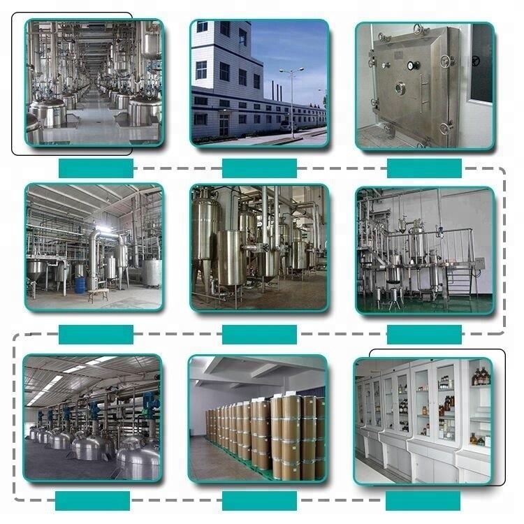 Supply 99% Citicoline 987-78-0