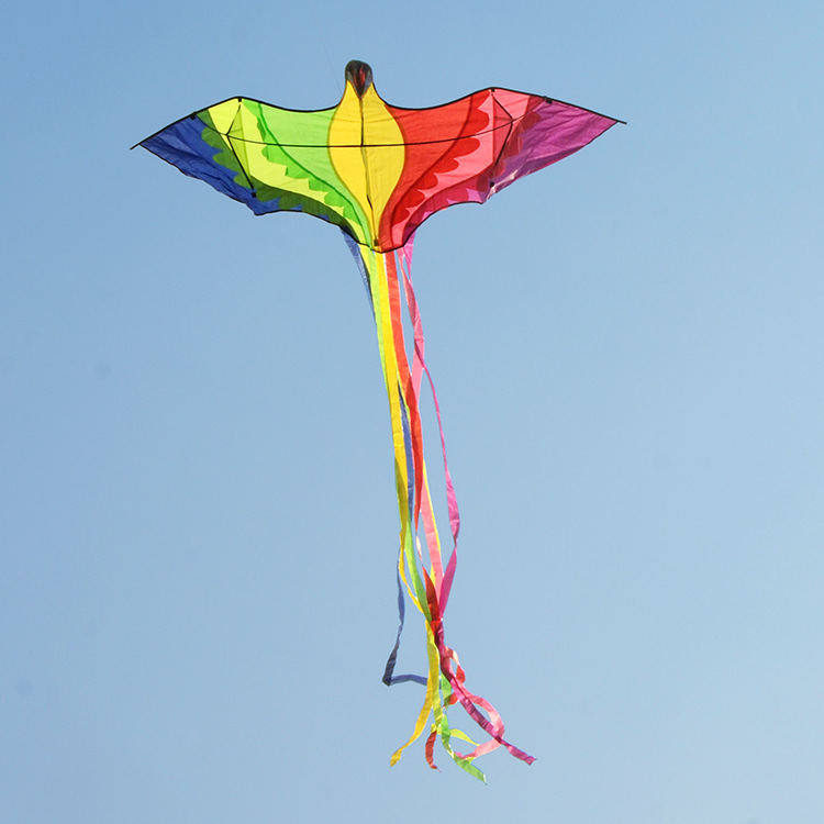 OEM Amazon factory colorful bird kite