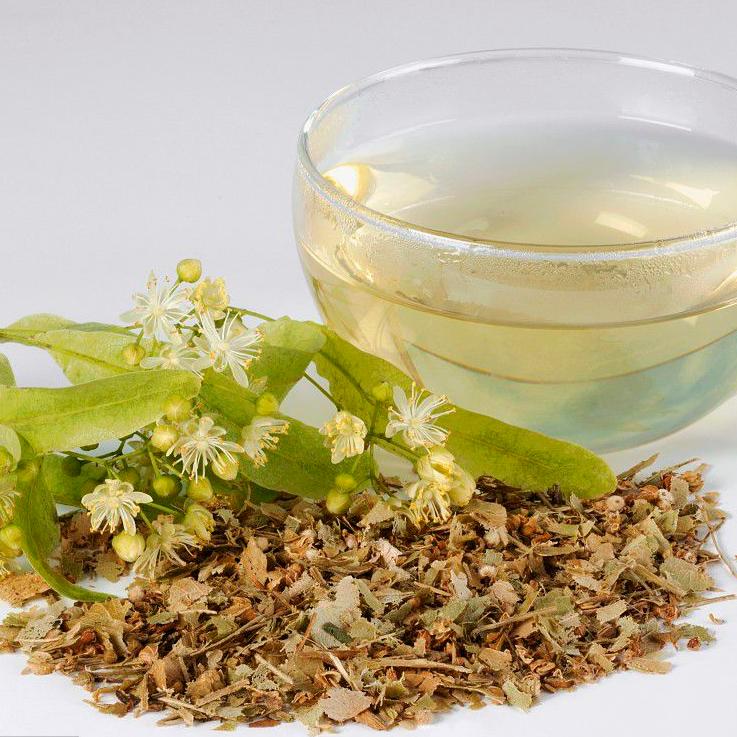 High Quality Herbal Tea Dried Tilia Tuan Flower Tea Linden Flower Tea For Sale - 4uTea   4uTea.com