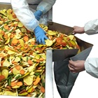 Chips Vacuum Fried Mixed Vegetable Chips Fruit Chips
