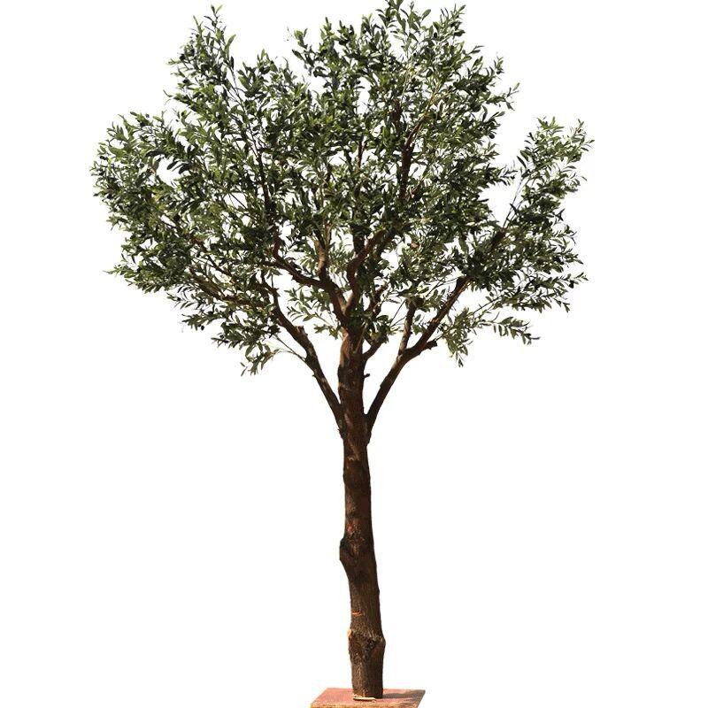 شجرة زيتون صناعية بلاستيكية عالية الجودة شجرة زيتون صناعية بتصميمات خضراء كبيرة الحجم وصغيرة الحجم لتزيين الأماكن الداخلية في الهواء الطلق Buy الزيتون شجرة الاصطناعي شجرة الزيتون في الهواء الطلق الاصطناعي شجرة الزيتون Product