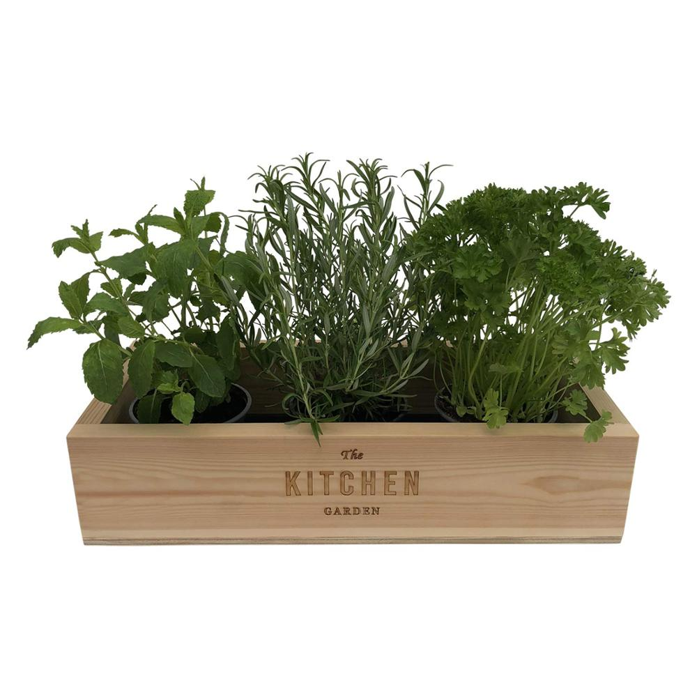 Kitchen Herb Garden Handmade Wooden Windowsill Seed Planter Box ...