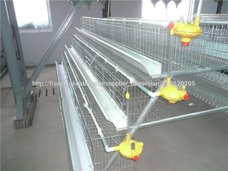 batteries de poule pondeuse cage de poule pondeuse wq b 101 cages pour animaux id du produit. Black Bedroom Furniture Sets. Home Design Ideas