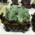 Hot sale large green ghost phantom crystal quartz cluster home decoration
