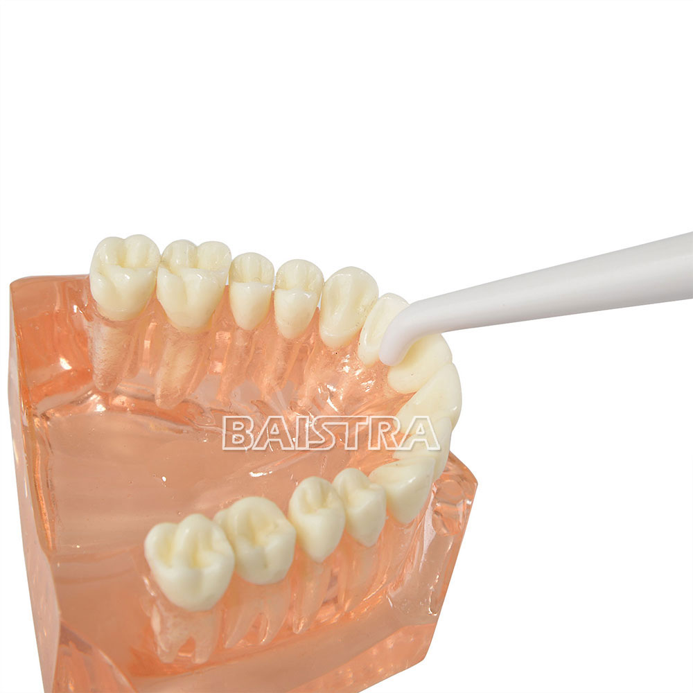 Oral Health Product Handle Type Dental Water Floss LV-180