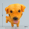Yellow soil dog