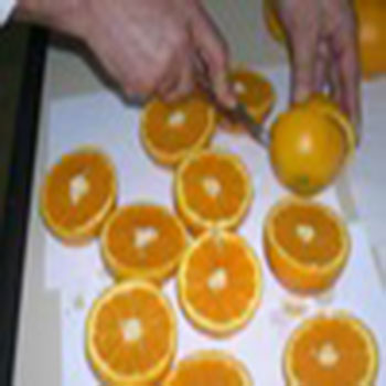 Валенсия поздняя апельсины