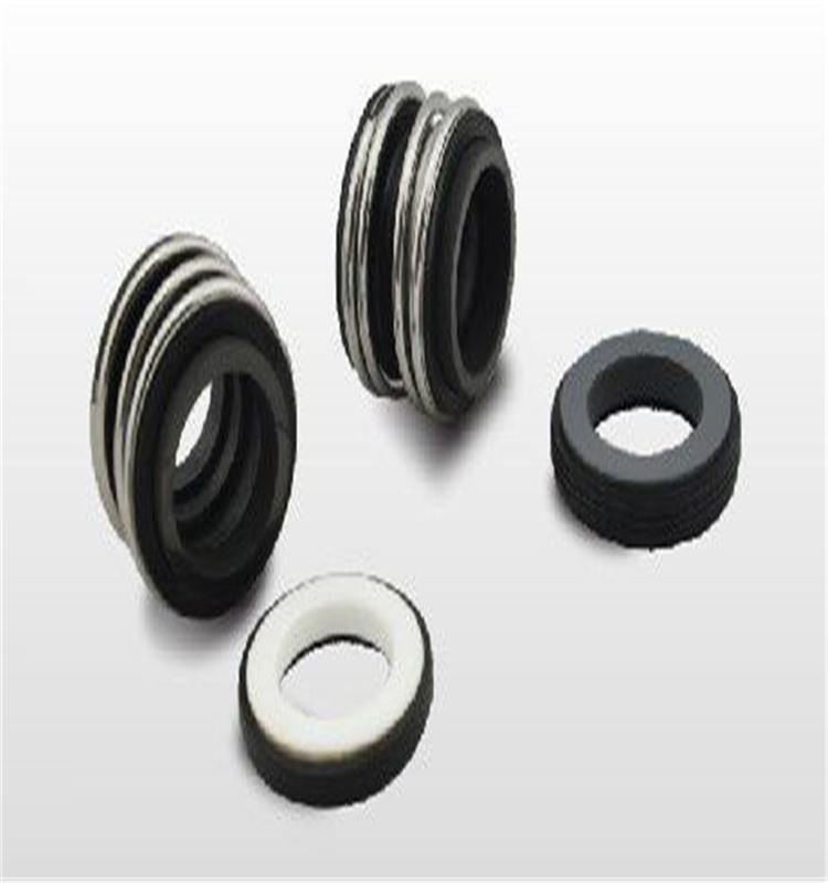 RM MG1 Replace Burgmann Pump Mechanical Seal