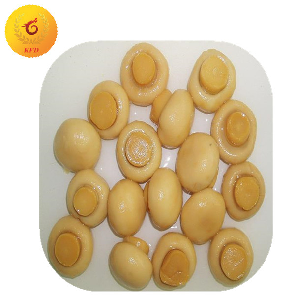 canned mushroom whole/canned mushroom PNS/canned food from China