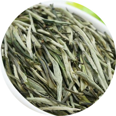 Chinese Silver Needle White Tea - 4uTea | 4uTea.com
