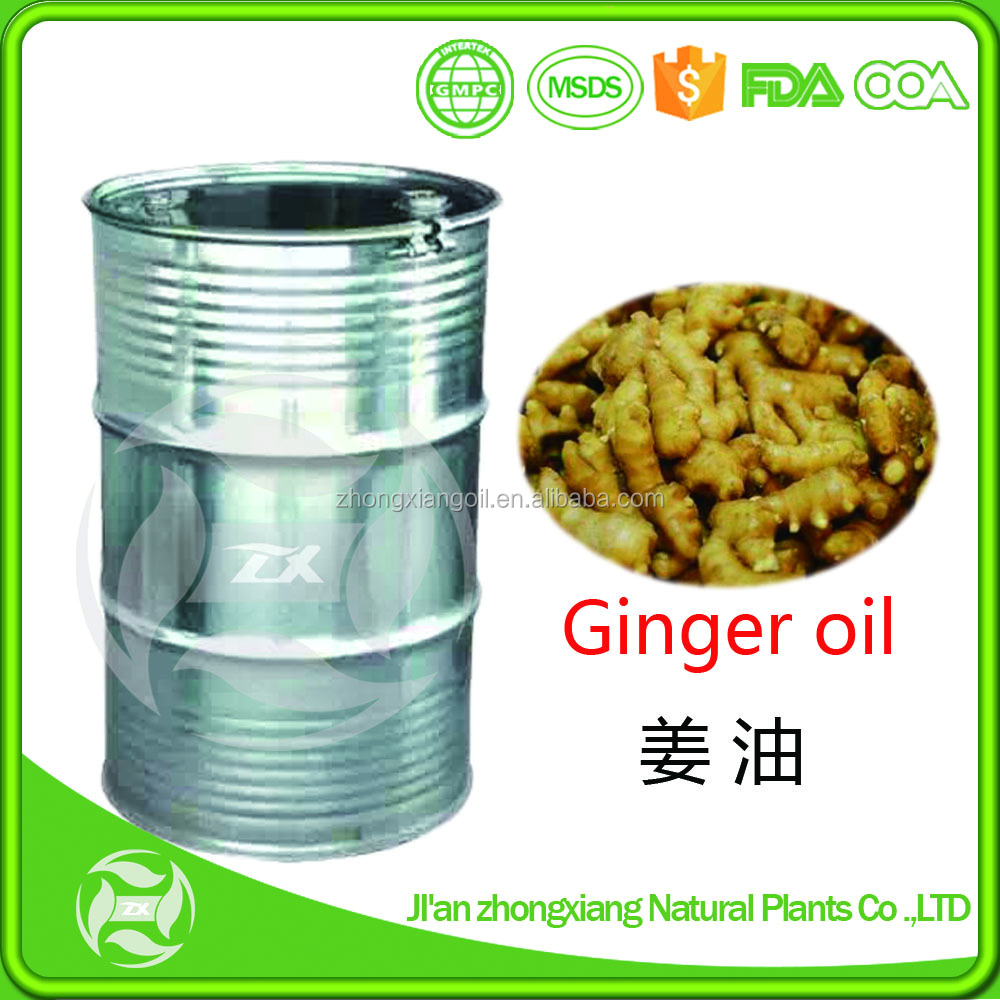 Best Price 100% Pure Ginger Essential Oil/Ginger Oil