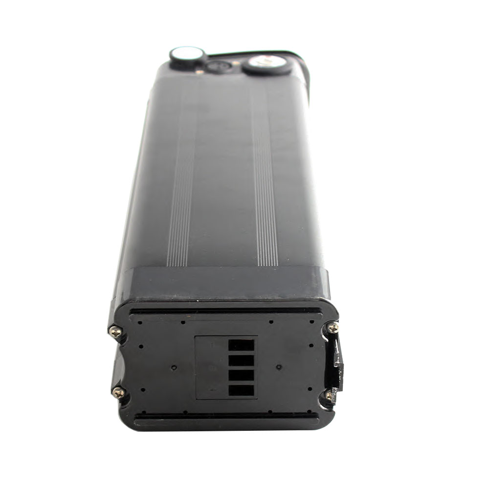 Delong Silver Fish Rechargeable 48V 20AH Ebike Battery Lithium Ion Battery Pack