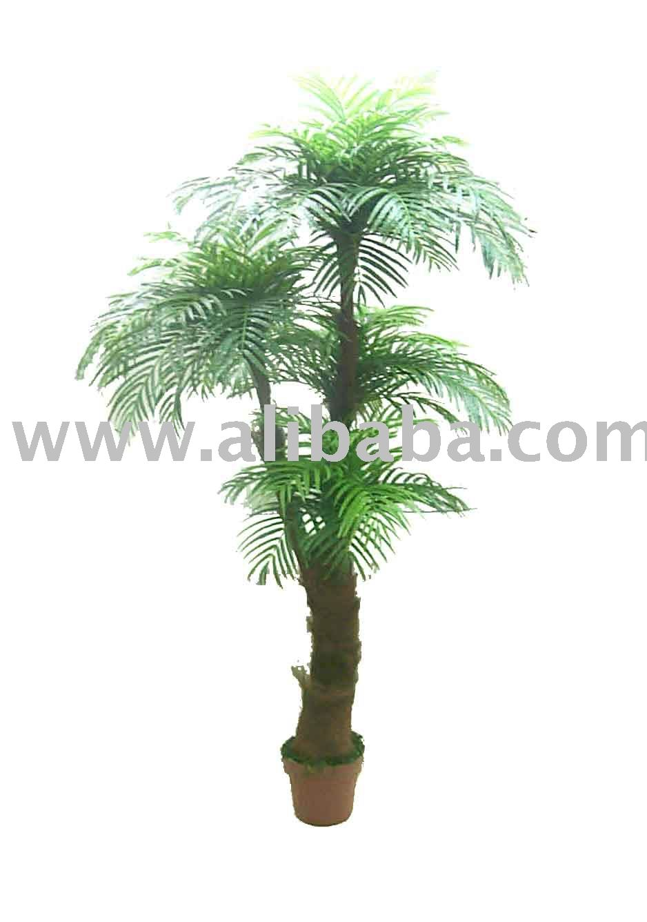 Sell Bonsais Plants And Trees