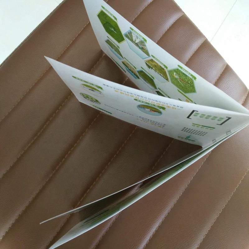 Printing luxury cheap advertising full color catalog and brochure