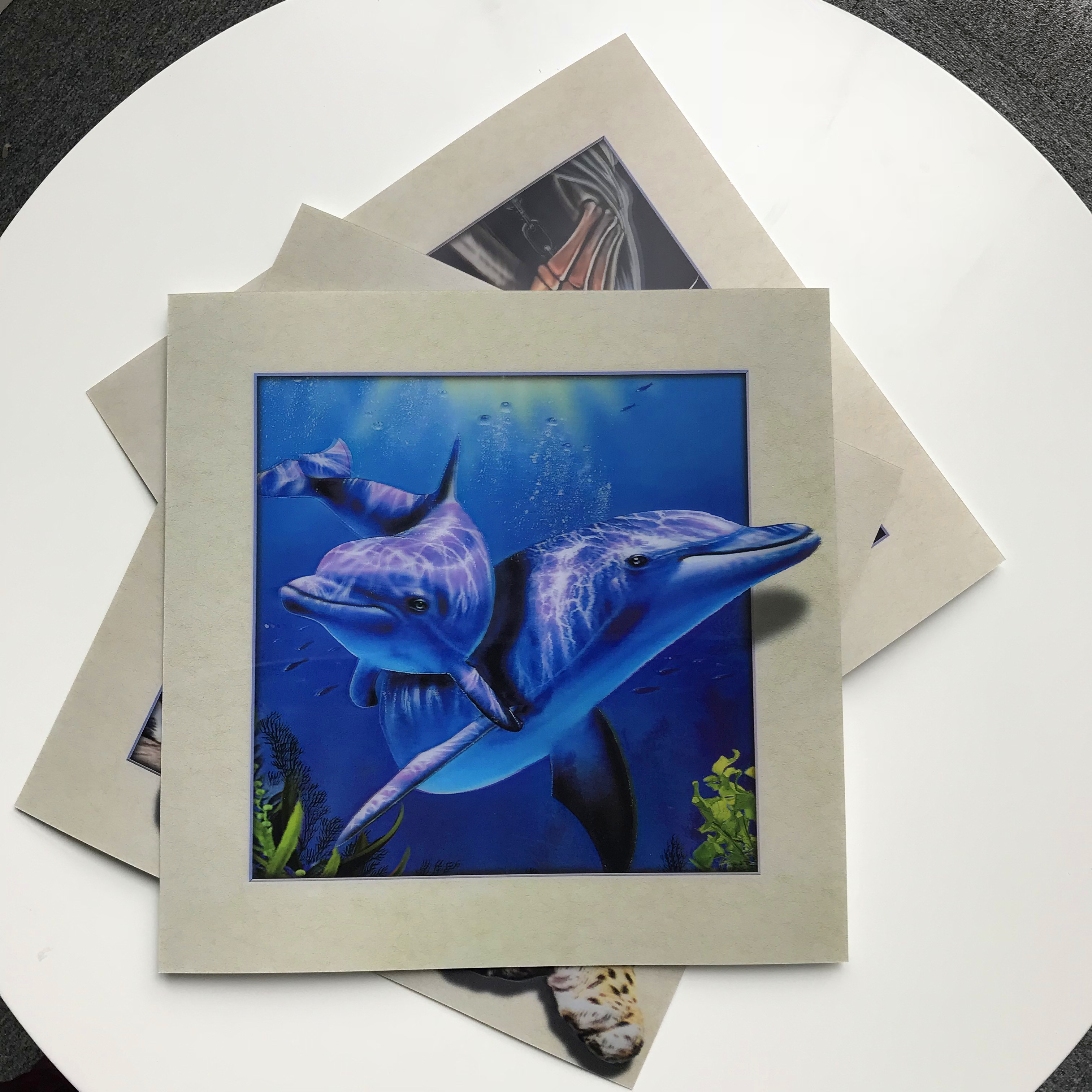 lenticular 5d picture of eagle 3d / 5d picture prints for home decoration of dolphin