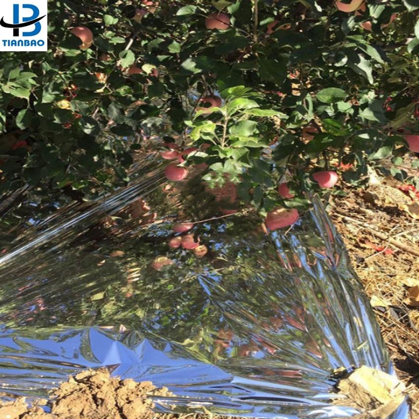 Пленка CPP сельскохозяйственная Отражающая пленка для винограда Лазерная алюминиевая пленка