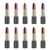 Professional lipstick makeup products with private label