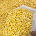Yellow Corn Corn Yellow Corn For Poultry Feed For Sale Yellow Maize
