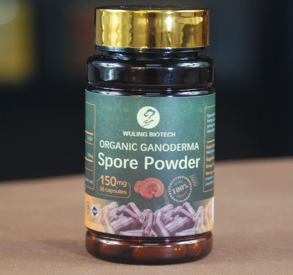 Wholesale Lingzhi Reishi Ganoderma Spore Powder Capsules