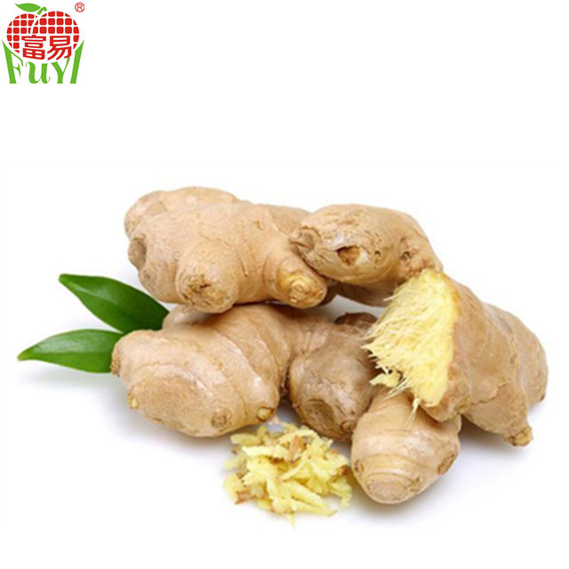 2015 import ginger in good quality