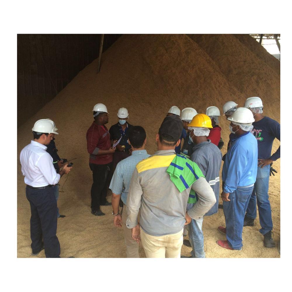 Syngas Biomass