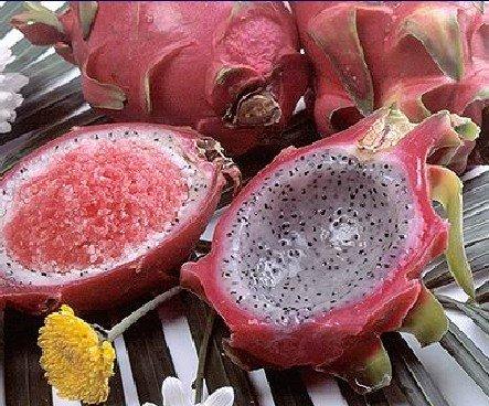 Замороженный Дракон фрукт оболочка