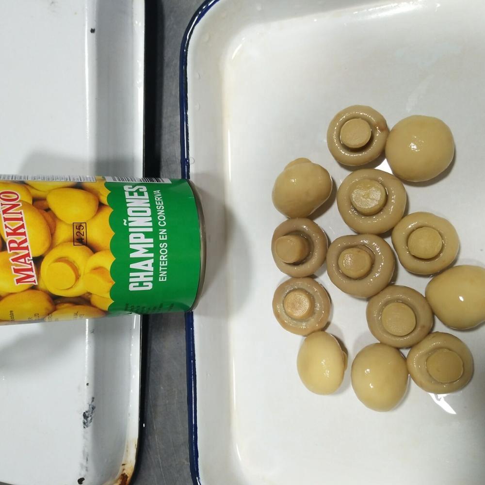 Высококачественные консервированные грибы, консервированные грибы PNS