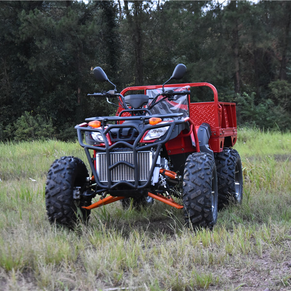 Спортивные Багги 250cc ATV горячая Распродажа четырехколесный гоночный мотоцикл с CE