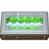 Ngọc Lục Bảo màu xanh lá cây