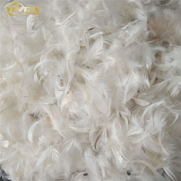 High Quality Home Textile Washed White/Grey Duck/Goose Down Feather