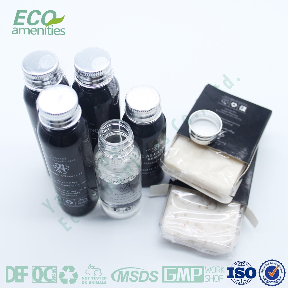 Factory wholesale disposable hotel amenity set,hotels to shampoo bottles