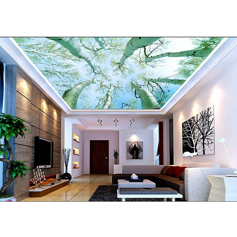 wallpaper ceilings related keywords - photo #22