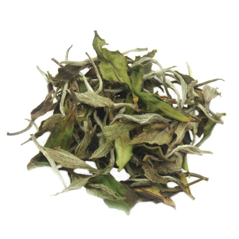 White Peony White Tea,Organic Tea,Baimudan - 4uTea | 4uTea.com