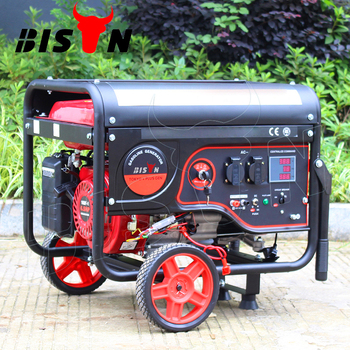 Bison Taizhou 100% Copper Wire Key Start Small Generator Gasoline with EU V